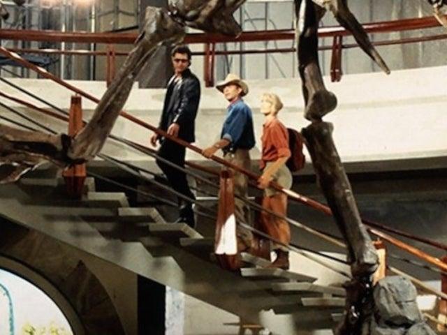 Sam Neill, Laura Dern and Jeff Goldblum All Returning for 'Jurassic World 3'