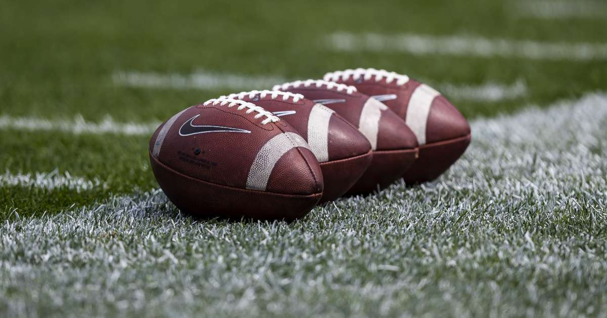 New Hampshire high school football players suspended beating killing duck