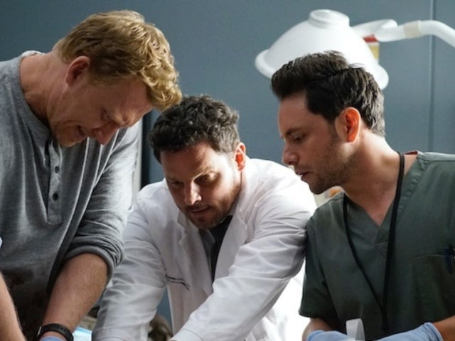 'Grey's Anatomy': Another Doctor Leaves the Hospital, and Fans Have Thoughts