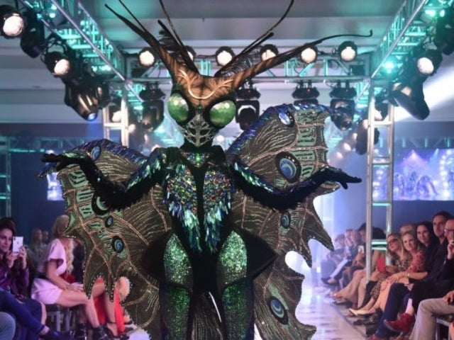 'The Masked Singer': Is Mel B the Butterfly?