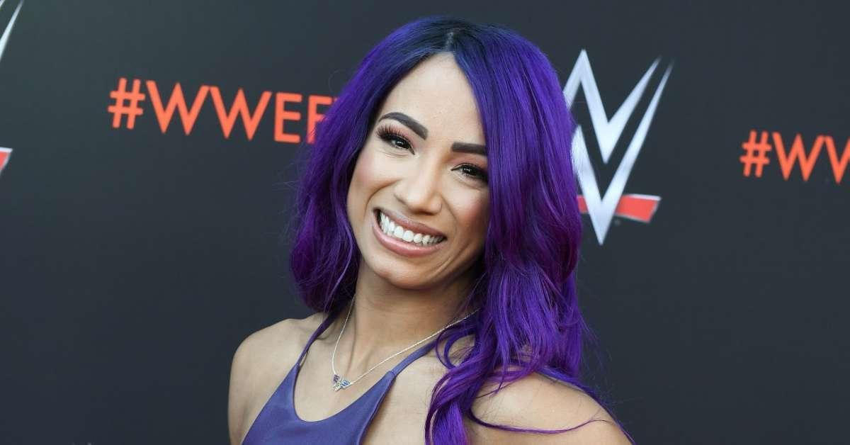 Sasha Banks Bray Watt WWE injured Hell in a Cell