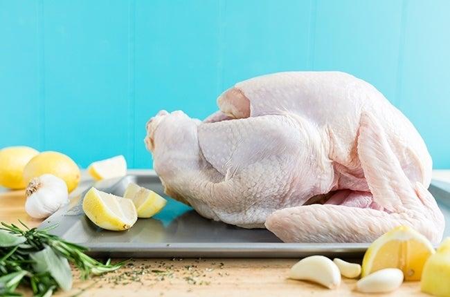 Thanksgiving-Turkey_RESIZED-1