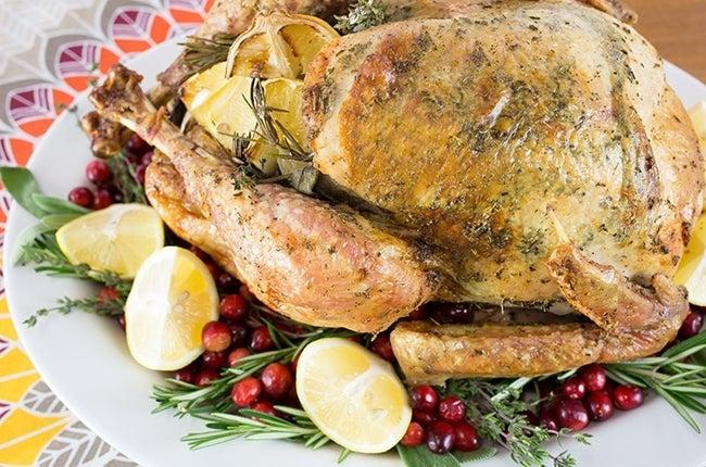 Thanksgiving-Turkey_RESIZED-20