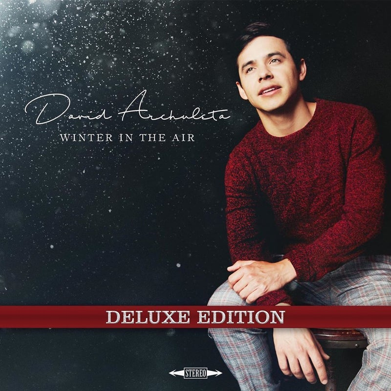 david-archuleta-winter-air-american-idol