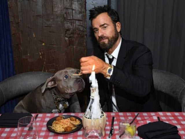 Justin Theroux Recreates 'Lady and the Tramp' Spaghetti Scene With His Dog