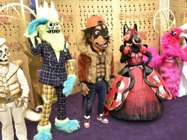 'The Masked Singer': What Celebrities Have Been Revealed so Far?