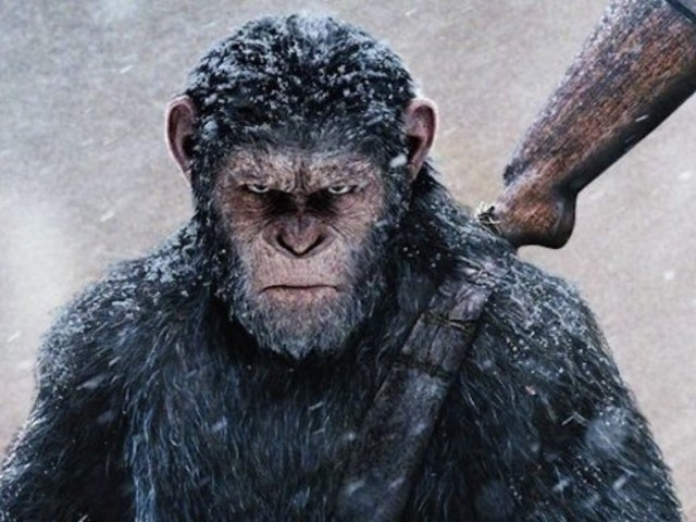 New 'Planet of the Apes' Movie in Development