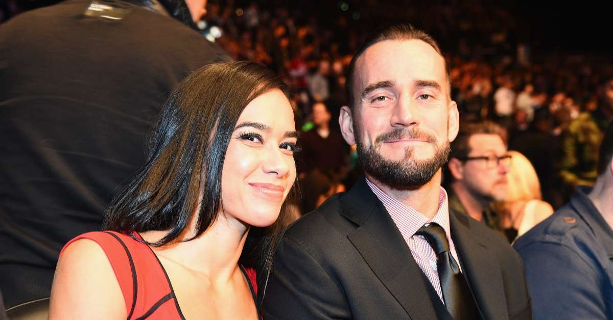 WWE_ CM Punk and AJ Lee Spotted out During Date Night at Chicago Bears Game