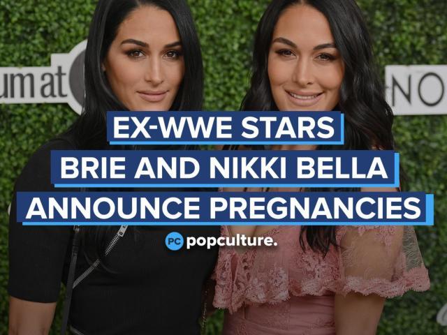 Ex-WWE Stars Brie Bella and Nikki Bella Announce Pregnancies