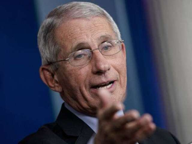'The Daily Show' Interview With Dr. Anthony Fauci: How to Watch, What Time, What Channel