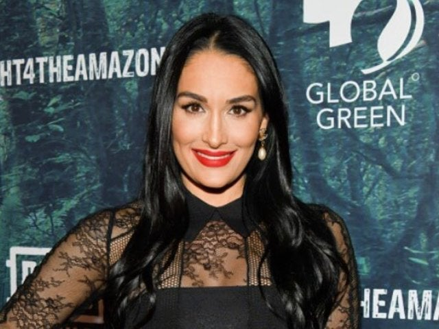 Nikki Bella Bares It All for Risqué Mirror Selfie Photo With Baby Bump