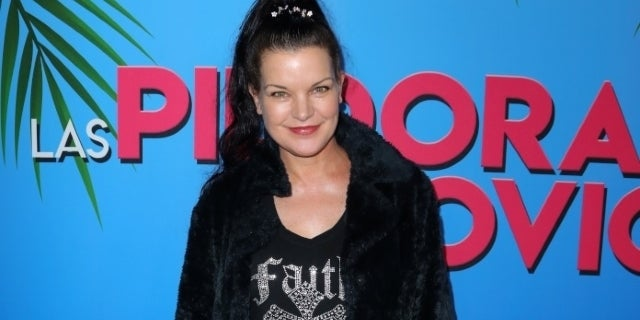 pauley perrette getty images
