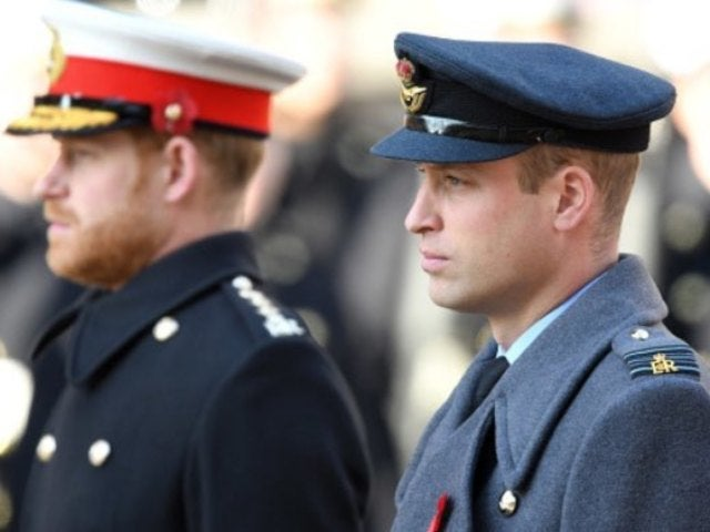 Prince William Allegedly Meeting in Private With Brother Harry Following Feud Rumors