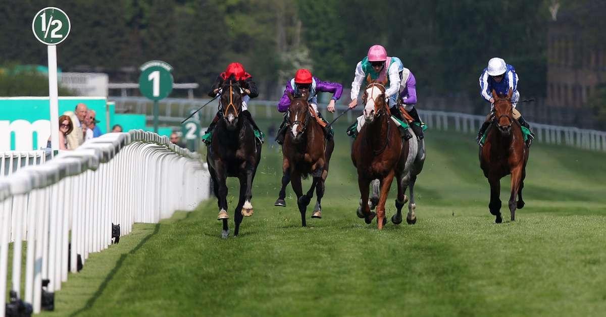 Richard Gamez jockey dead 66 trampled horse