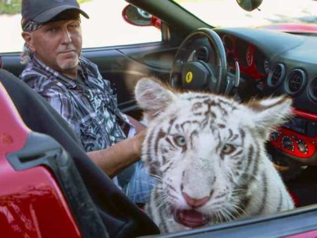 'Tiger King' Subject Jeff Lowe Gets Roasted by Social Media While Hosting Reddit AMA