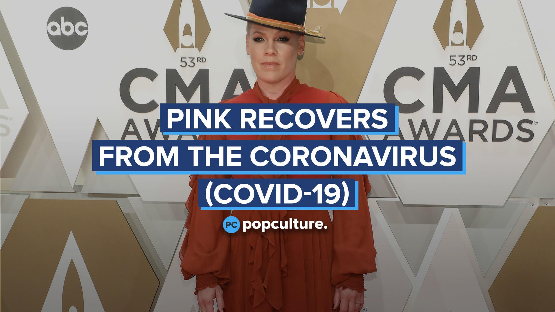 Pink Recovers From The Coronavirus (Covid-19)