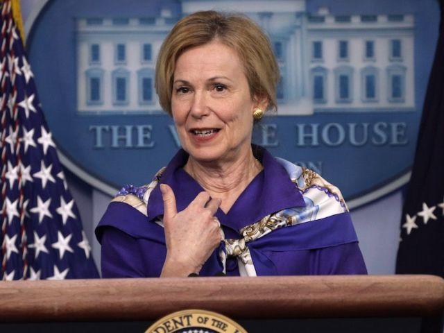 Donald Trump Criticizes Deborah Birx After She Gives Coronavirus Warning