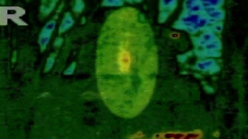 ghost-hunters-flir-camera