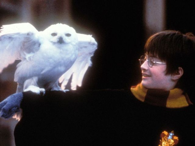 'Harry Potter' Series Reportedly in Talks at HBO Max