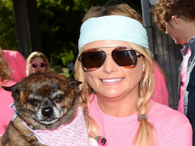 Miranda Lambert's MuttNation Raises Over $80,000 for Shelters After Nashville Tornadoes