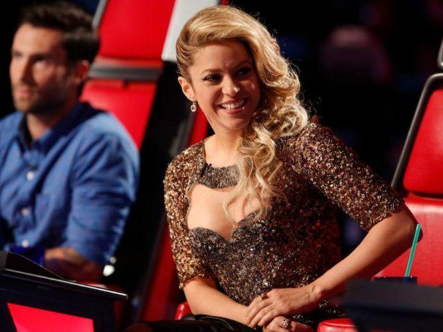 'The Voice' Fans Loving Former Coaches' Surprise Finale Cameos