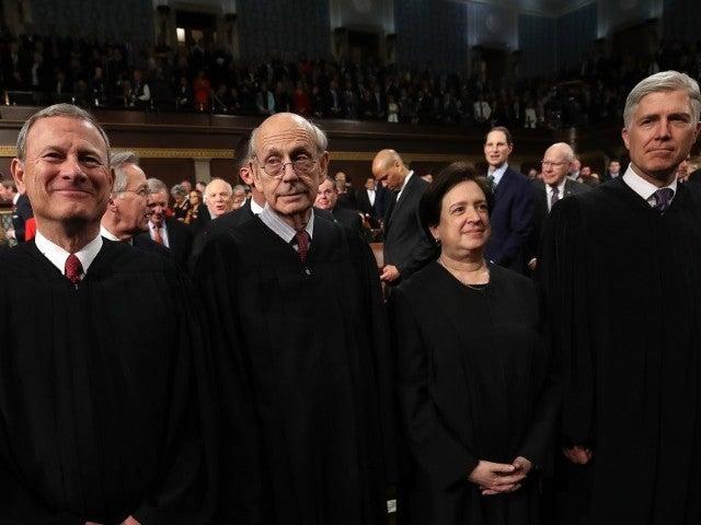 Toilet Flush Interrupts Remote Supreme Court Argument