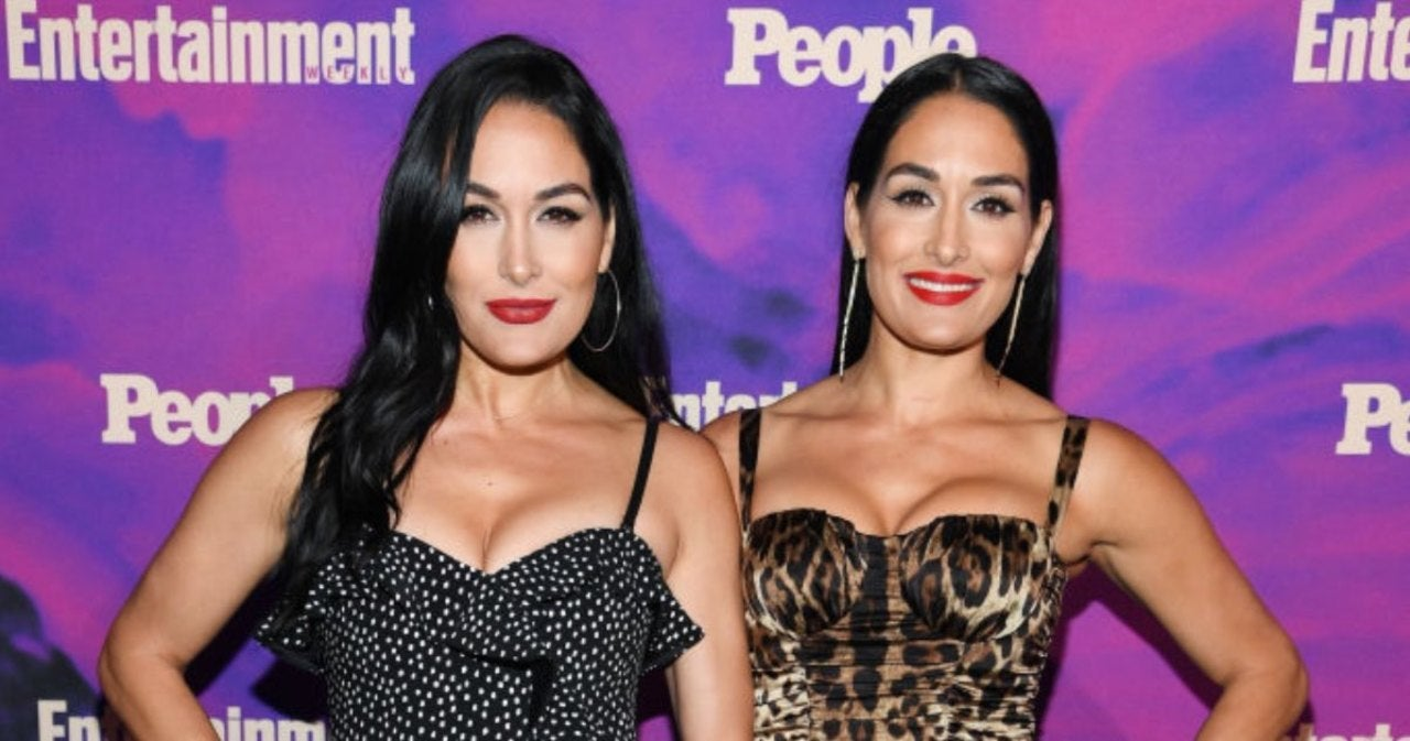 WWE Total Bellas Is Reportedly Getting Cancelled 126