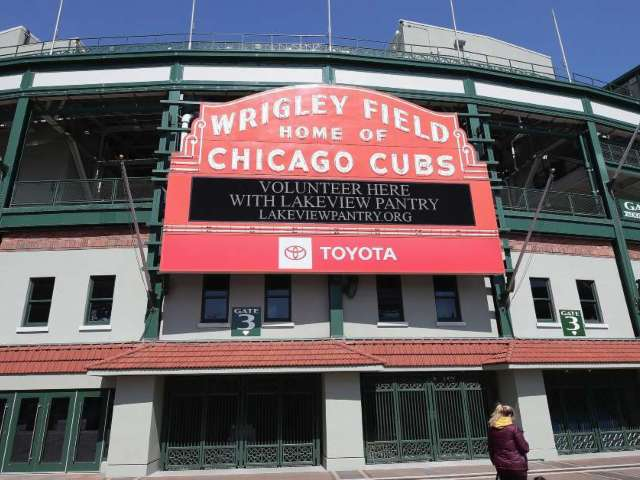 Woman Hit by Foul Ball at Cubs Game Sues Team, MLB