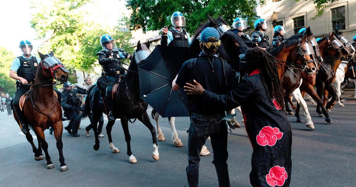dc-protest-horse-donald-trump