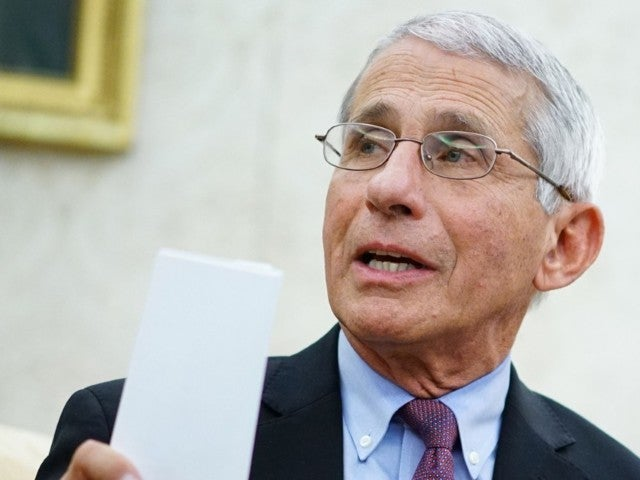 Social Media Takes Glee in Anthony Fauci's Reaction to Rand Paul's Rant Against Coronavirus Experts