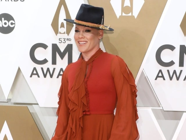 Pink Slams Instagram Followers After They Criticize Her Support for Black Lives Matter