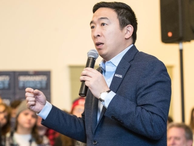 DNC 2020: Andrew Yang Slams 'Patronizing Element' of Democratic Messaging Ahead of Convention Speech