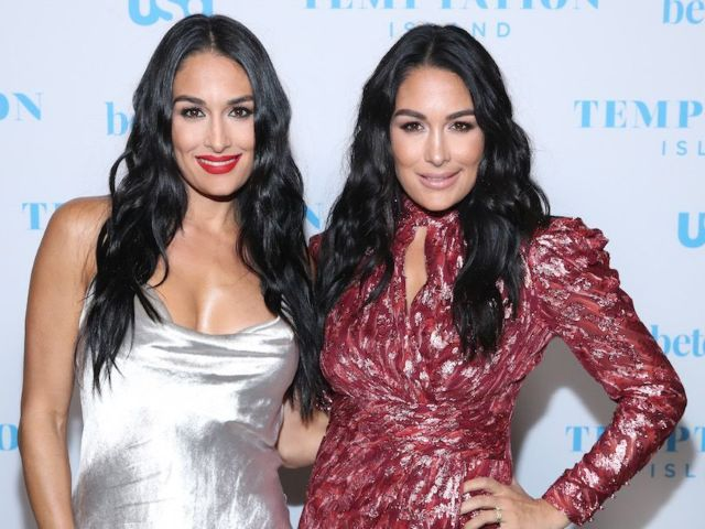 Nikki Bella Welcomes Son 1 Day Before Sister Brie Bella Welcomes Baby No. 2 and Fans Are Obsessed