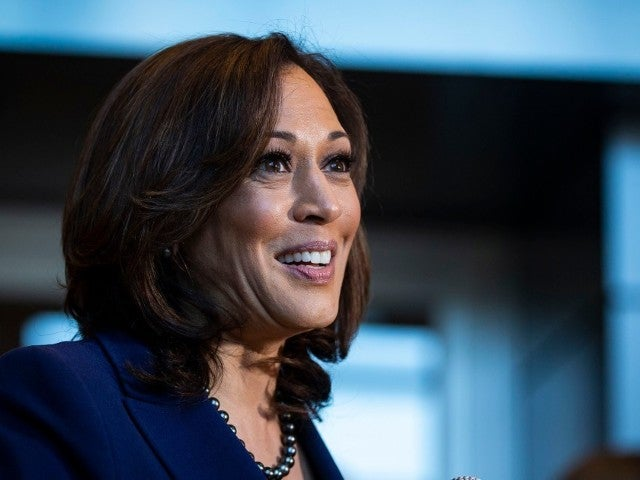 Stimulus Checks: Kamala Harris' Support for $2,000 Monthly Payments Has People Talking
