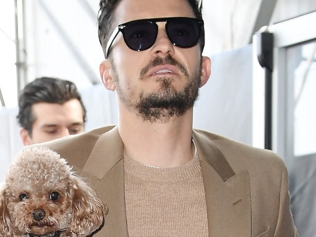 Orlando Bloom Steps out With New Puppy Months After the Death of His Dog Mighty