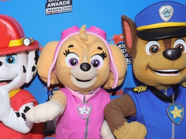 White House Spreads Falsehoods Claiming 'Paw Patrol' Was Canceled Amid Black Lives Matter Protests