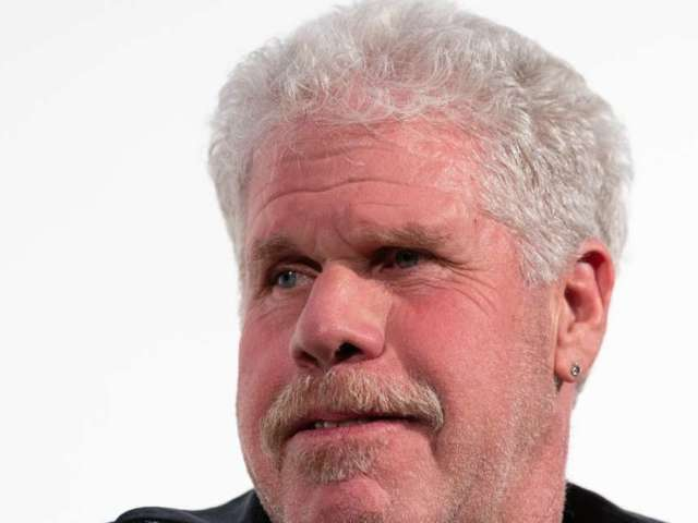 'Sons of Anarchy' Star Ron Perlman's Wife Opal Stone Responds to Divorce Petition 8 Months After Filing