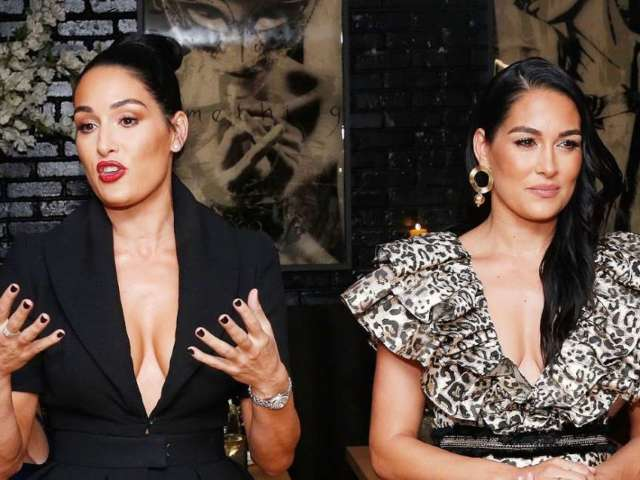 Why Nikki and Brie Bella Are Linking up With Michael Strahan