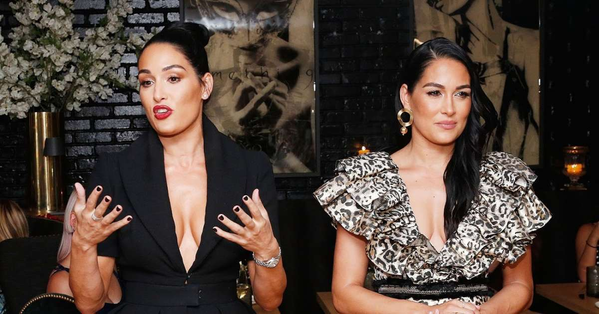 Why Nikki and Brie Bella linking up Michael Strahan