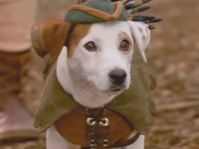 'Wishbone' Movie Based off '90s PBS Series Officially in the Works