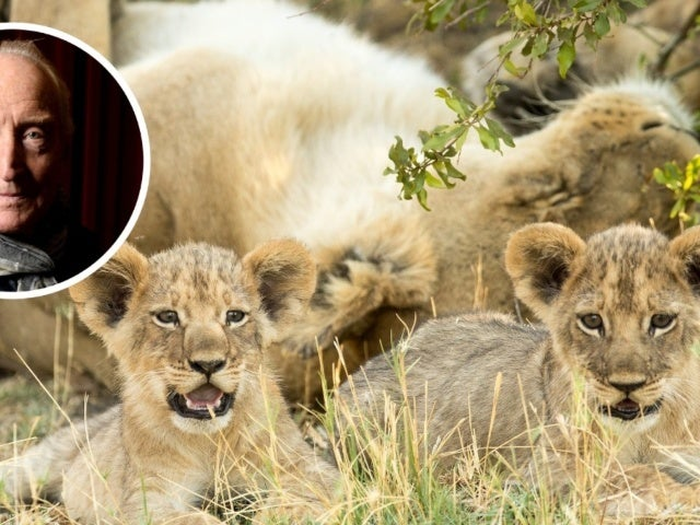 'Savage Kingdom' Narrator Charles Dance Details 'Wonderful' Botswana Visit for NatGeo Docuseries (Exclusive)