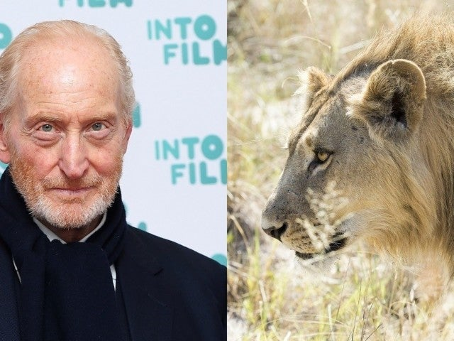 'Game of Thrones' Actor Charles Dance Reveals 'Useful Parallel' to 'Savage Kingdom' Fan Crossover (Exclusive)