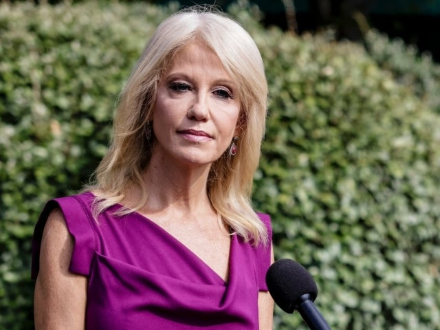 Kellyanne Conway Calls out Social Media Companies Against Donald Trump as 'Election Interference'