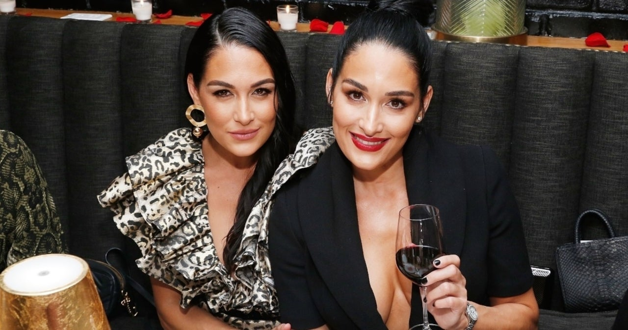 Bella Twins Might End 'Total Bellas' Sooner Than Fans Expect.jpg