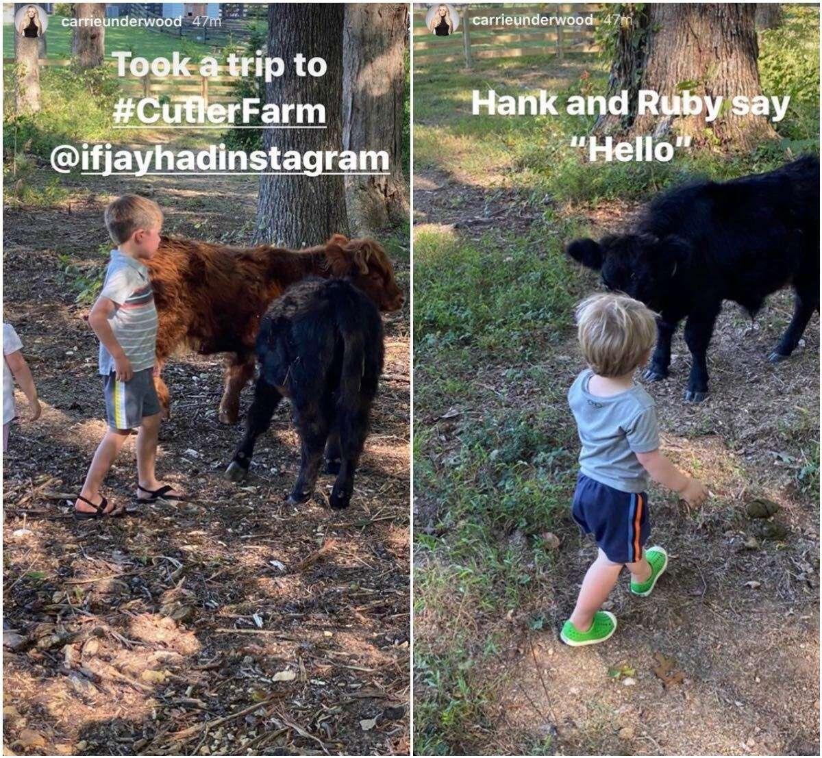 Carrie Underwood Jay Cutler farm 2