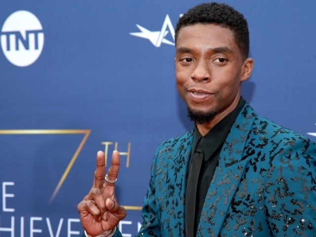 Chadwick Boseman 'Black Panther' Mural Tribute Unveiled at Disneyland