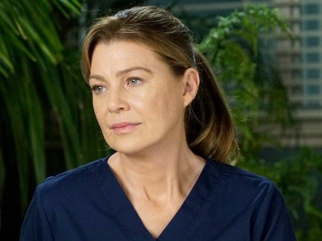 'Grey's Anatomy' Ellen Pompeo Teases 'Adorable' New Couple in Season 17
