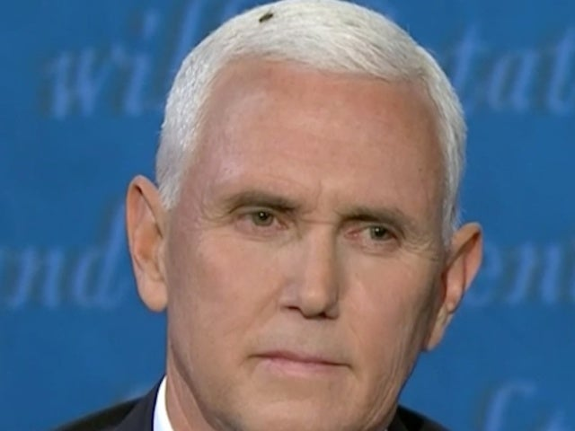 Debate 2020: Fly Lands on Vice President Mike Pence's Head and Social Media Loses It