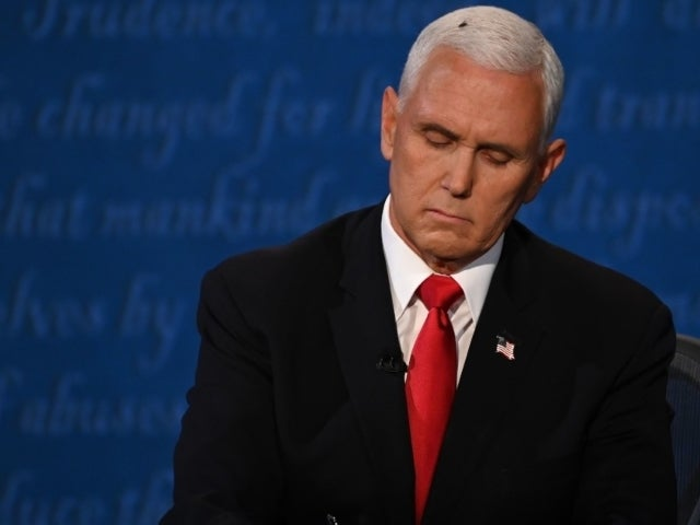 Mike Pence's Debate Fly Moment is Already a Halloween Costume