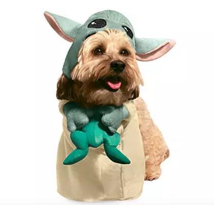 the-child-baby-yoda-dog-costume-halloween